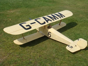 HAWKER CYGNET by Richard Ginge